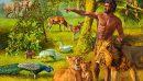 Animals & Humans