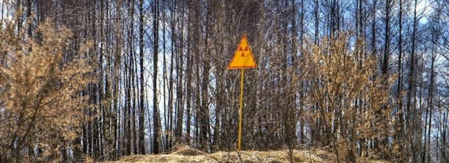 Welcome to the Chernobyl Nature Reserve