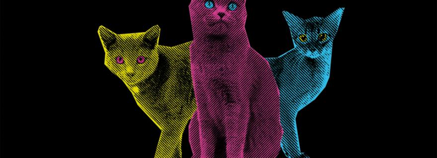 Radioactive Felines