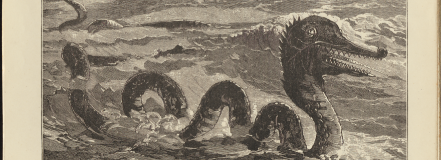 Monsters, Sea-Monks, and Mermaids: Strange Creatures from the Sea from Antiquity to the Modern Age