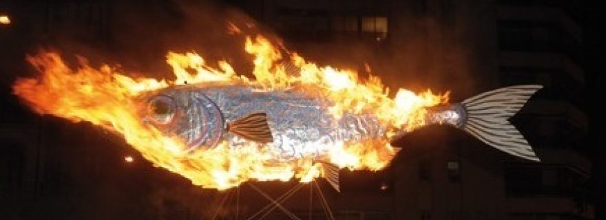 Extremely Oily Flammable Fish