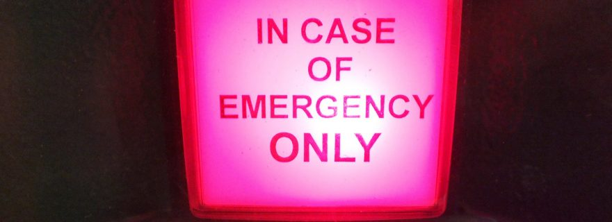 In Case of Emergency Break Law: Āpad Dharma and the State of Exception