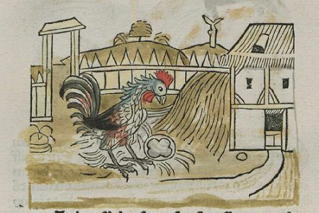 The Rooster & the Pearl: A Little Aesopic Odyssey