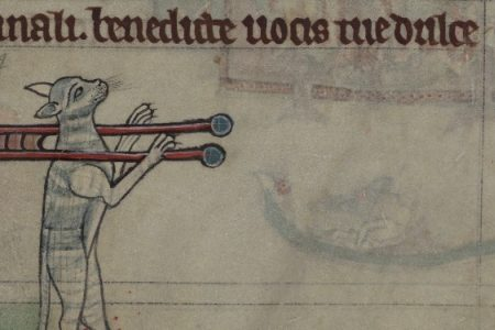 The Cat in Medieval Western Europe